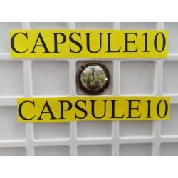 CAPSULES DE CHAMPAGNE PUIT...