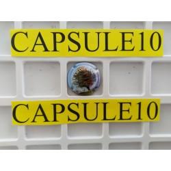 CAPSULES DE CHAMPAGNE ARBRE...